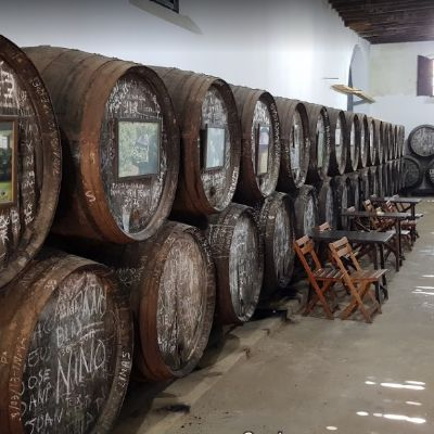 Visita Bodega Manuel Aragón